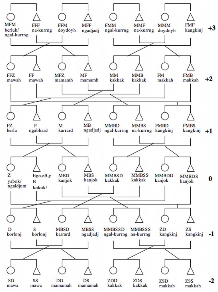 kin-generation-chart-765x1024